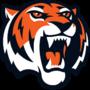 Size 90 amurskie tigry 2016